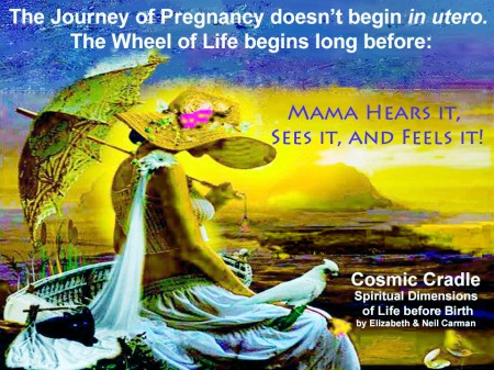The journey of a soul begins long before a pregnancy occurs...